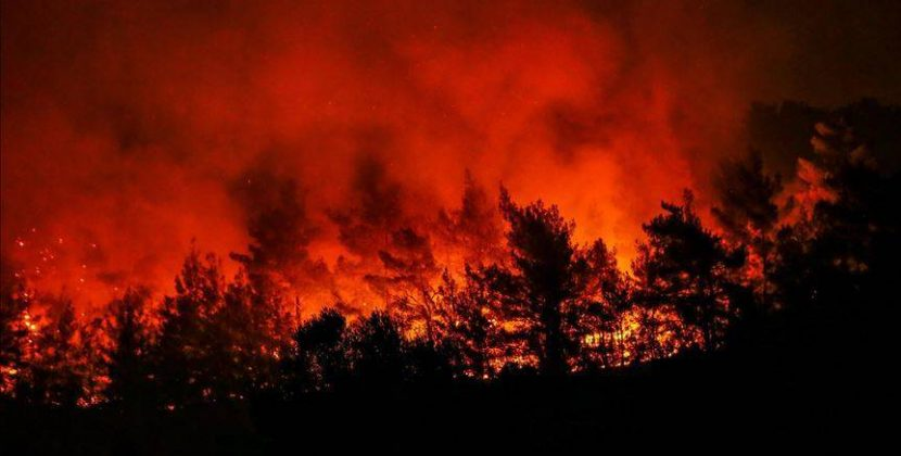 La Alianza por el Clima pedirá frente a la embajada de Brasil una acción urgente para frenar los incendios en el Amazonas