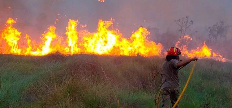 Paraguay declaró emergencia ambiental por los incendios forestales